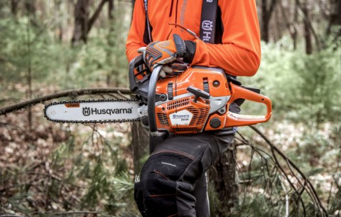 Can you cut wet wood with a chainsaw?